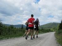 Läufer raus aus dem Wald?