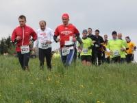 Wie viele Marathons willst Du dieses Jahr laufen?